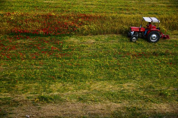 A tractor cuts grass in Mriehel on April 25. Photo: Jonathan Borg