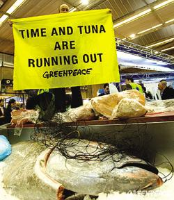 Greenpeace activists yesterday closed down stalls at a seafood exhibition in Brussels.