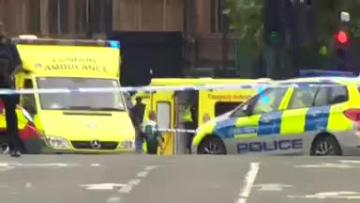 Watch: Police arrest man for terrorism offences as car hits UK parliament barriers