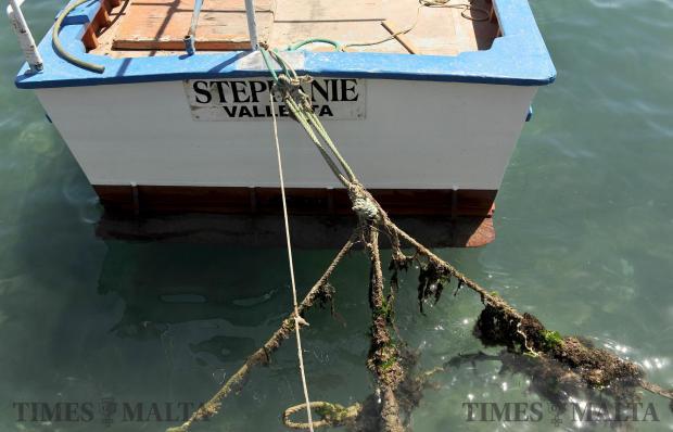 A boat is tied to the Marsaxlokk quay on April 18. Photo: Chris san Fournier