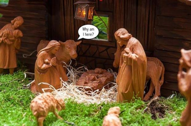 Your Christmas Crib Is Wrong There Were No Animals In The Bible S