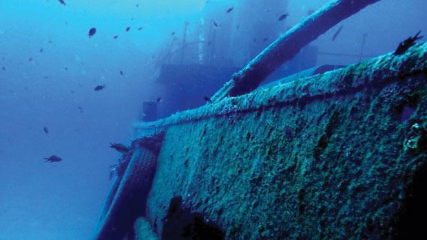 The seaweed is always greener for Gozo dive centres