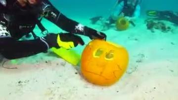 Scuba divers carve Halloween pumpkins underwater