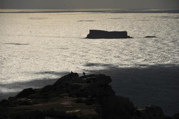 The islet of Filfla on January 13.  Photo:  Chris Sant Fournier