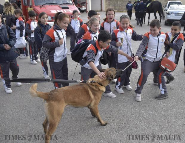 Children play with a police dog during an open day held at the Civil Protection headquarters in Xemxija on February 13. Photo: Mark Zammit Cordina