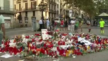 Police in Spain still looking for van attack driver