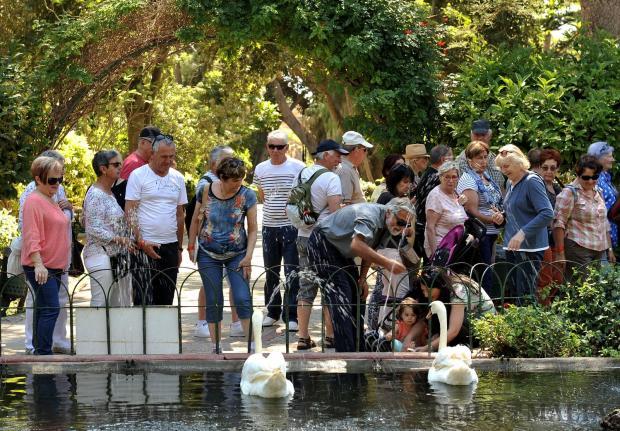 Tourists feed swans in San Anton on May 22. Photo: Chris Sant Fournier