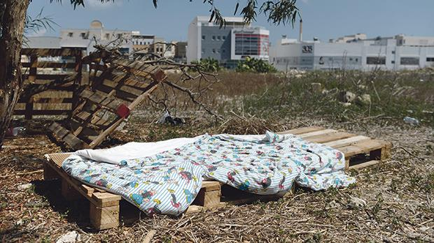Some of the migrants evicted from a Qormi cow shed ended up living in a field in Mrieħel. Photos: Matthew Mirabelli