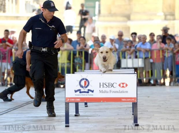 A police dog handler runs alongside his partner during a demonstration outside Parliament in Valletta on July 4, to celebrate the Police Forces 202nd Anniversary. Photo: Matthew Mirabelli