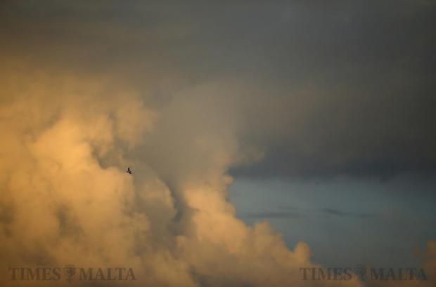 A pigeon flies over Hamrun at sunset on December 3. Photo: Darrin Zammit Lupi