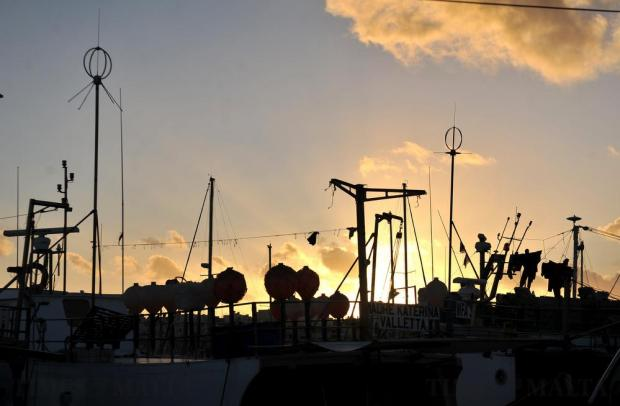 Trawler masts stand out against the setting sun at Marsaxlokk on January 14. Photo: Chris Sant Fournier