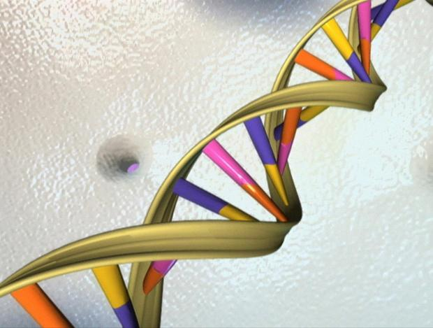 Reuters file photo of a DNA double helix in an undated artist's illustration released by the National Human Genome Research Institute.
