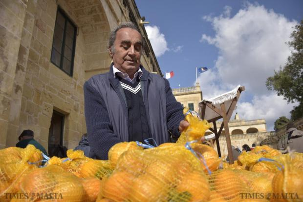 A volunteer places oranges at the Citrus Festival held on January 17 in the gardens of San Anton Palace, hosted by The Malta Community Chest Fund. Photo: Mark Zammit Cordina