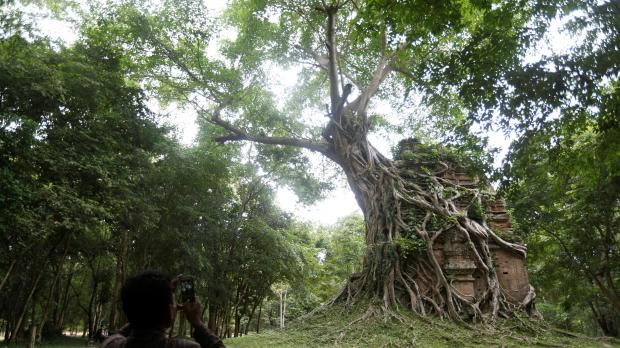 A tourist visits Sambor Prei Kuk, or 'the temple in the richness'. Photo: Reuters/Samrang Pring