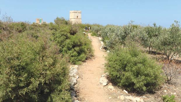 The tower overlooking Għajn Tuffieħa Bay. Photos: Matthew Mirabelli