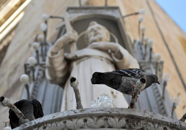 Pigeons rest on a statue in Valletta on March 1. Photo: Chris Sant Fournier