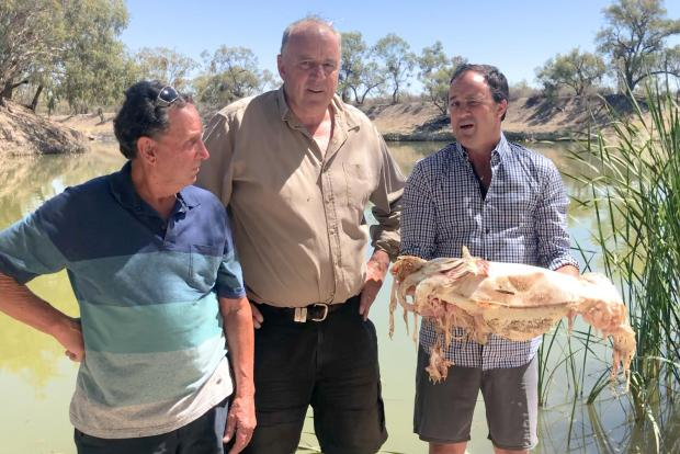 New South Wales member of parliament Jeremy Buckingham holding a decades-old native Murray cod, which was killed during a massive fish kill in Menindee on the Darling River, as local residents Dick Arnold (L) and Rob McBride from Tolarno Station (C) look on.
