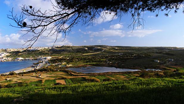 Għadira Nature Reserve. Photo: Maria Mifsud