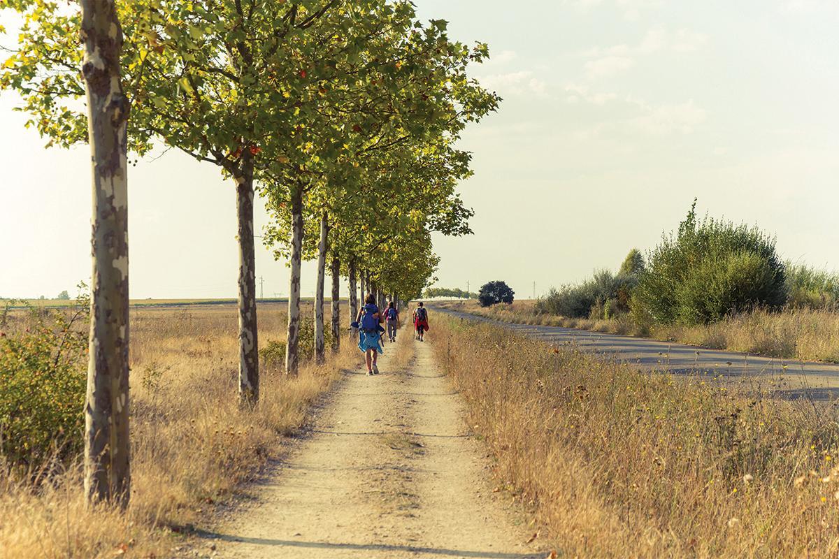 Pilgrims walking on the Camino near the village of Bercianos del Real Camino.  Photo: Shutterstock.com
