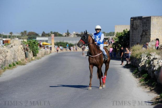 A rider wearing his racing gear and the eight-pointed cross of Malta prepares his horse before the race during the l-Imnarja traditional street races on Saqqajja hill near Rabat on June 29. Photo: Steve Zammit Lupi