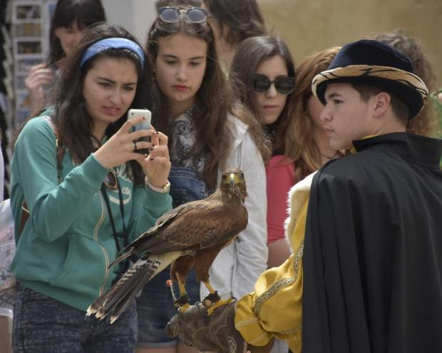 A teenager takes a photo of a falcon at the Medieval Mdina Festival on April 23. Photo: Mark Zammit Cordina