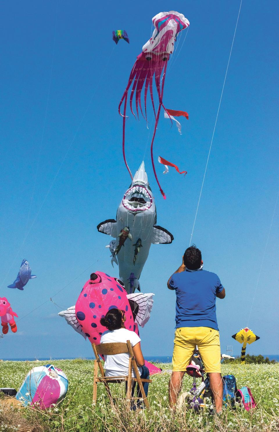 Kites depicting animals were among the festival's main attractions.
