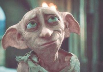 Superb Dobby The Elf.