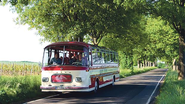 IBB Hotel Ingelheim's residents on an excursion touring the region's vineyards on a vintage bus.