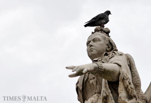 A pigeon sits on the head of a statue of Queen Victoria in Republic Square in Valletta on December 12. Photo: Chris Sant Fournier