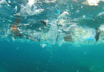 Island of plastic in Pacific 16 times bigger than estimates, study says