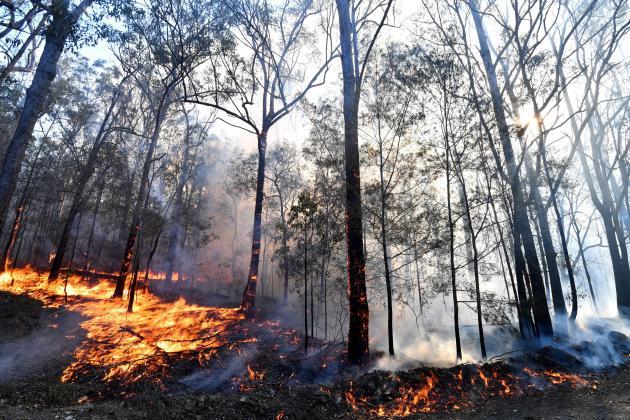 Watch: 'Uncharted territory' as bushfires rage across Australia's east