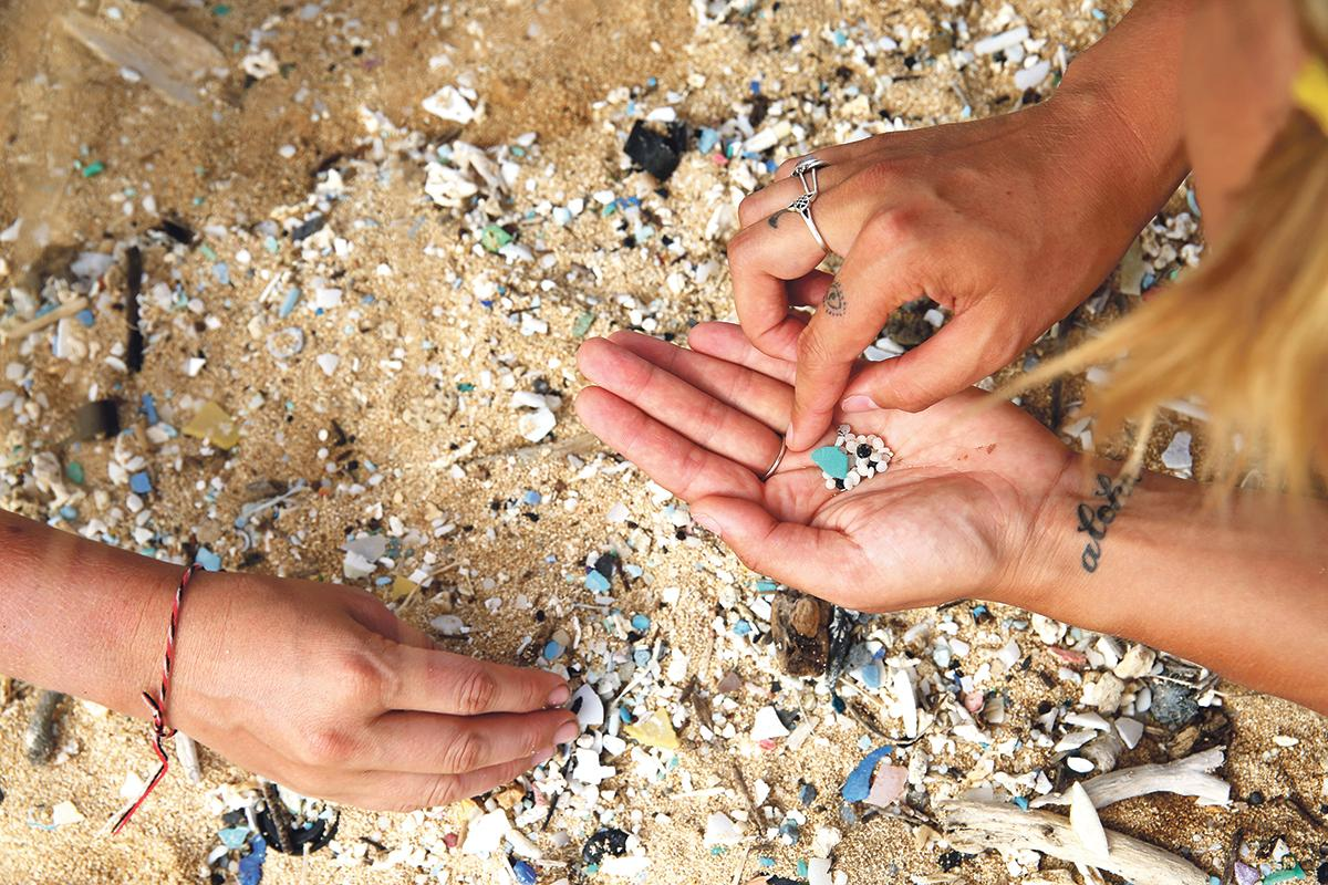 Plastics found on the North Pacific leg from Hawaii to Vancouver. Photo: Eleanor Church Lark Rise Pictures