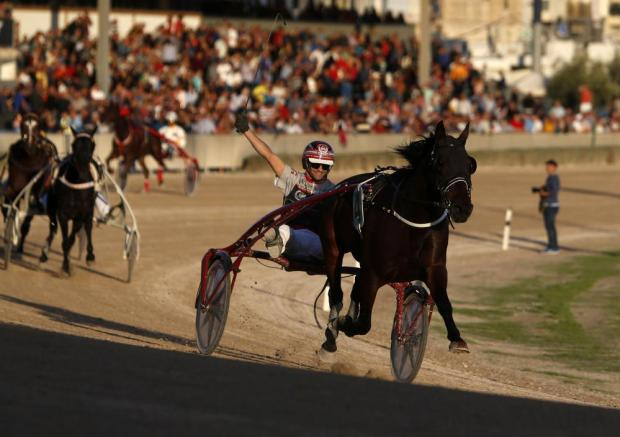 Rodney Gatt steers Uhal Berven to victory in the President's Cup final at the Marsa Racetrack on November 13. Photo: Darrin Zammit Lupi