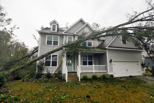 A tree rests on a newly-built house in Belville, North Carolina. Photo: Reuters