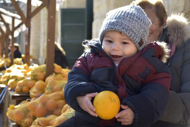 A baby gets a hands-on experience at the Citrus Festival held on January 17 in the gardens of San Anton Palace, hosted by The Malta Community Chest Fund. Photo: Mark Zammit Cordina