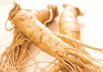 "Evaluating ginseng: ""The ideal shape should look like two slim ladies with shapely legs dancing together in the wind."""