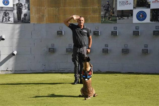 13 dogs made sergeants as prison gets a new K9 unit