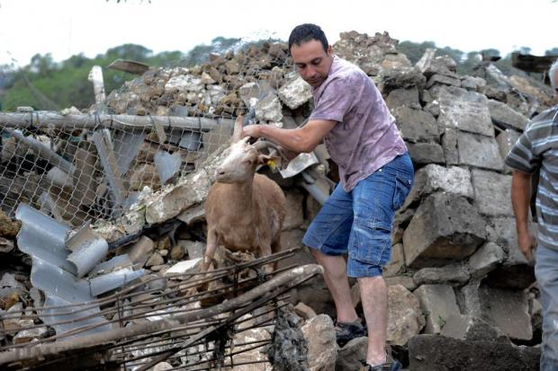 A farmer rescues his goat the day after a fireworks explosion wrecked his farm shed in Gudja on October 31 . Photo: Steve Zammit Lupi