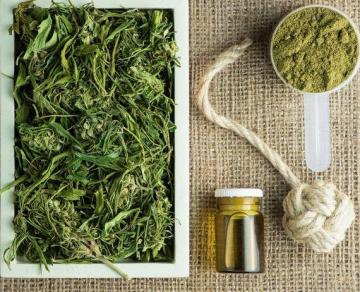 Industrial hemp plant products: tea, oil, rope, protein powder and hemp fabric. Photo: Shutterstock.