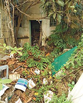 This house and garden will be transformed into spaces where services are offered to domestic violence survivors by the St Jeanne Antide Foundation – but more manpower and funds are needed.
