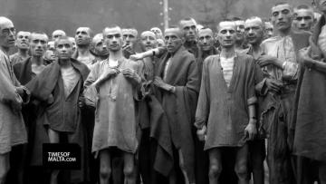 Watch: 'Why we have to remember the Holocaust every year' | Video: Matthew Mirabelli