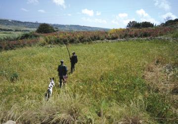 Tension erupts between hunting lobbies over spring season