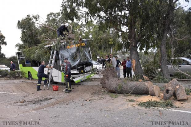 Members of the CPD remove remains of a tree after a Malta Public Transport bus lost control in Marsa on December 5. Photo: Mark Zammit Cordina.