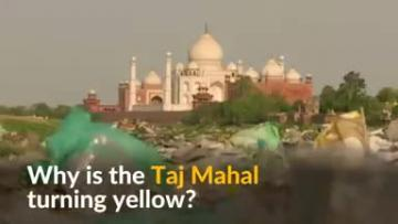 Taj Mahal turning yellow due to pollution