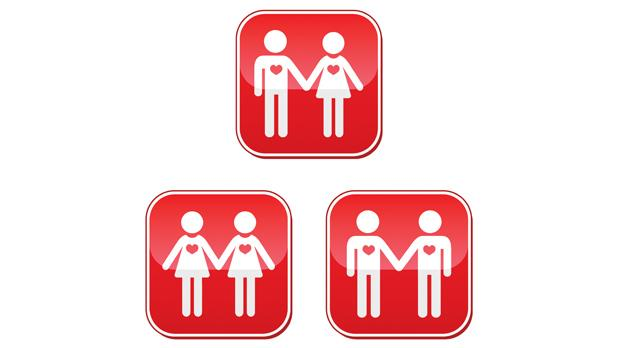 Equality may be wrongly understood as a blanket concept that denies differences. It could change marriage into simply a neutral, logistical exercise for people of any sex to be together.