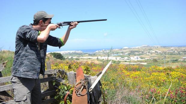 Image result for malta bird shooting