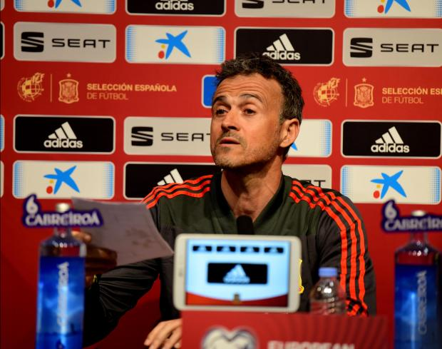 Spain coach Luis Enrique will be meeting Malta for the second time on our islands. Photo: Mark Zammit Cordina