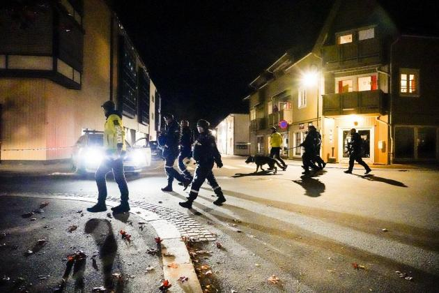 Five killed in Norway bow-and-arrow attack, suspect arrested