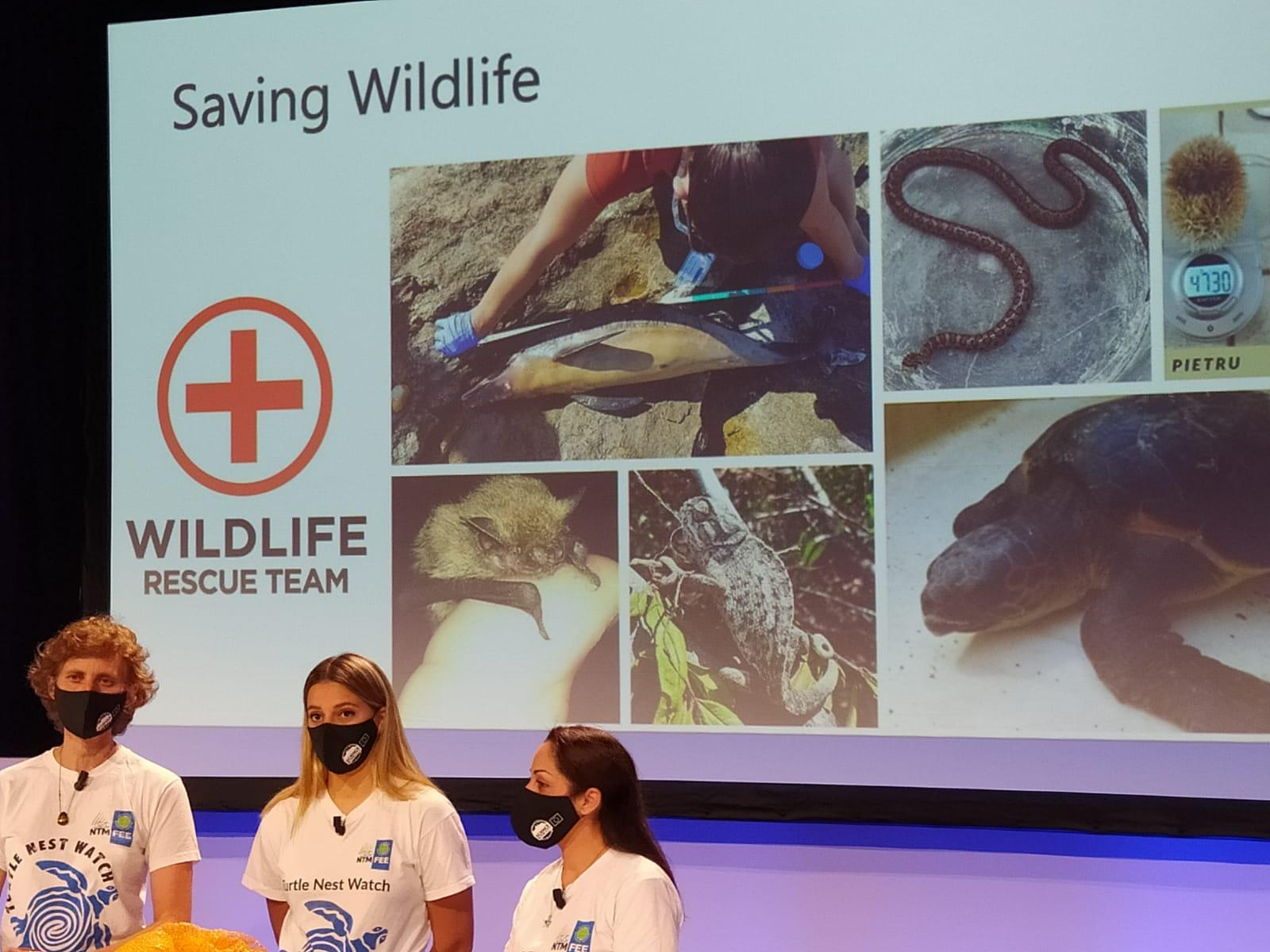Science in the City Wildlife Rescue Team from Nature Trust Malta.