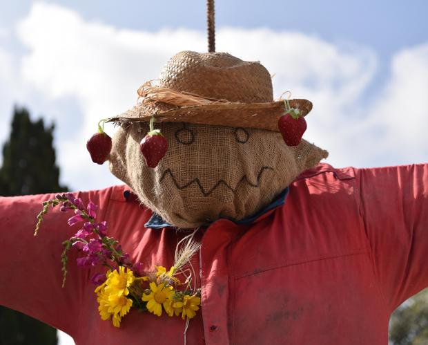 A Scarecrow is worn a hat with hung strawberries during the Strawberry feast in Mgarr on April 08. Photo: Mark Zammit Cordina